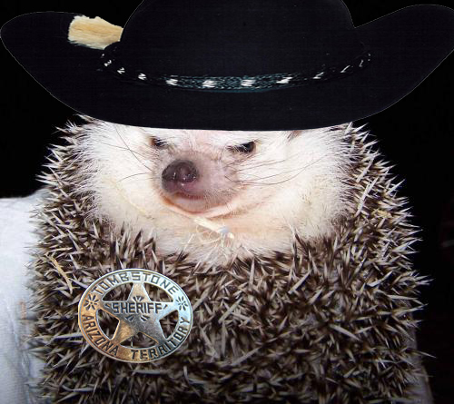 Cowboy_HedgeHog.jpg